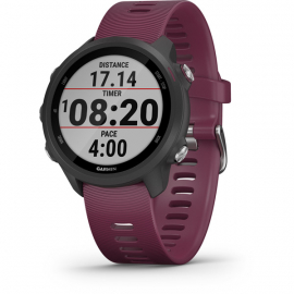 Forerunner 245 Running Watch -