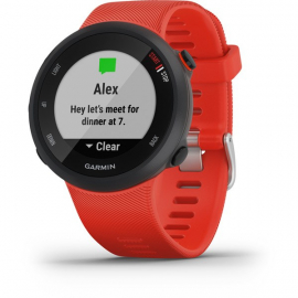 Forerunner 45 GPS Watch - Lava