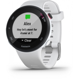 Forerunner 45S GPS Watch -